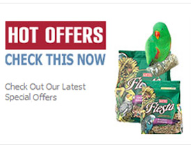 Check our latest hot offers